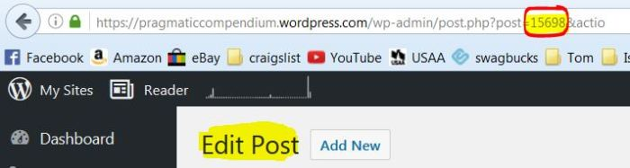 wordpress-post-id-in-edit-post